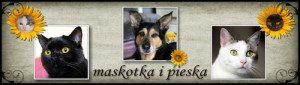 maskotka-i-pieska-300x85